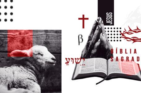 Qual a forma mais eficiente de estudar a bíblia?