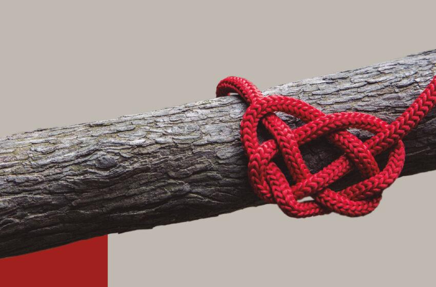 O cordão de três dobras: aliança e compromisso